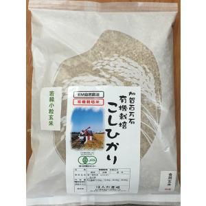 無農薬 お米 有機米 JAS認定 有機若緑小粒玄米 29年産 1.5kg 無農薬米 有機米|hondanojo