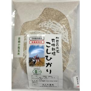 無農薬 お米 有機米 JAS認定 有機若緑小粒玄米 29年産 2kg 無農薬 有機米|hondanojo