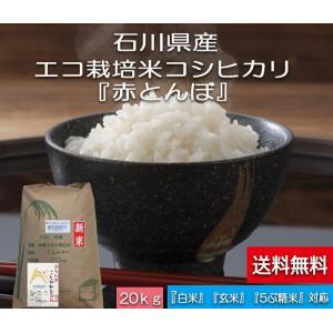 加賀百万石 こしひかり エコ栽培米 平成30年産 石川県産 新米  赤とんぼ  白米 20kg|hondanojo