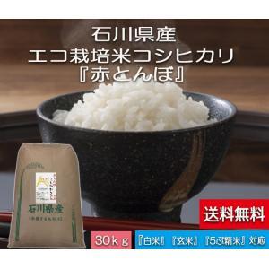 加賀百万石 こしひかり エコ栽培米 平成30年産 石川県産 新米  赤とんぼ  白米 30kg|hondanojo