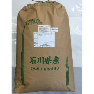加賀百万石 こしひかり エコ栽培米 平成30年産 石川県産 新米  赤とんぼ  食用玄米 30kg|hondanojo