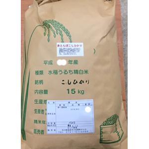 加賀百万石 こしひかり エコ栽培米 平成30年産 石川県産 新米  赤とんぼ  白米 5分づき 15kg|hondanojo