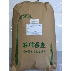加賀百万石 こしひかり エコ栽培米 平成30年産 石川県産 新米  赤とんぼ  白米 5分づき 20kg|hondanojo