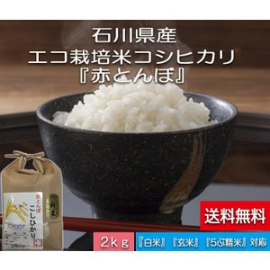 加賀百万石 こしひかり エコ栽培米 平成29年産 石川県産 新米  赤とんぼ  白米 2kg  送料無料|hondanojo
