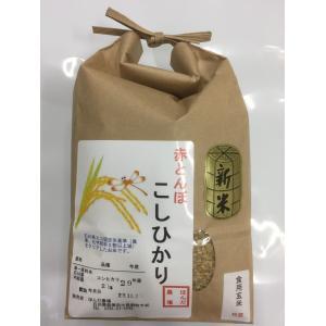 加賀百万石 こしひかり エコ栽培米 平成29年産 石川県産 新米  赤とんぼ  食用 玄米 2kg  送料無料|hondanojo