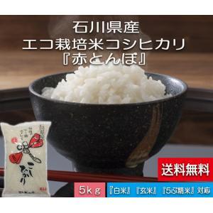 加賀百万石 こしひかり エコ栽培米 平成29年産 石川県産 新米  赤とんぼ  白米 5kg  送料無料|hondanojo