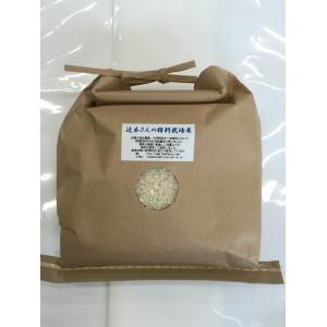 29年産 新米 石川県産 辻本さんの特別栽培米 コシヒカリ 白米 2kg|hondanojo