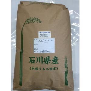 29年産 新米 石川県産 辻本さんの特別栽培米 コシヒカリ 食用 玄米 20kg|hondanojo