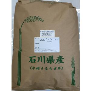 29年産 新米 石川県産 辻本さんの特別栽培米 コシヒカリ 白米 30kg|hondanojo