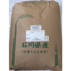 29年産 新米 石川県産 辻本さんの特別栽培米 コシヒカリ 食用 玄米 30kg|hondanojo