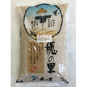 新米 平成29年産 加賀厳選 ゆめみづほ 食用 玄米 5kg|hondanojo
