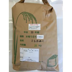 新米 平成30年産 加賀厳選米 ゆめみづほ 食用玄米 20kg|hondanojo