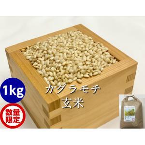 カグラもち玄米1kg|hondanojo
