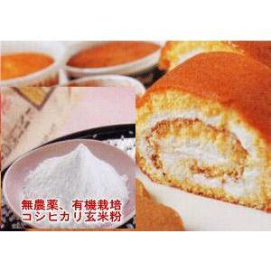 (送料無料)無農薬 米粉 有機栽培 安全安心 コシヒカリ  上質 玄米粉 300g メール便 米粉|hondanojo
