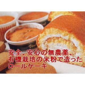 有機・米粉ロール3本(送料、冷凍料込み)|hondanojo
