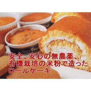 有機・米粉ロールハーフ(ミニ)5本(送料、冷凍料込み)|hondanojo