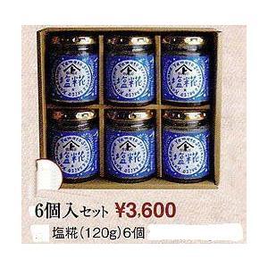 塩糀120g6個入りセット|hondanojo