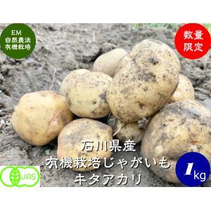 有機ジャガイモ(キタアカリ)1kg hondanojo