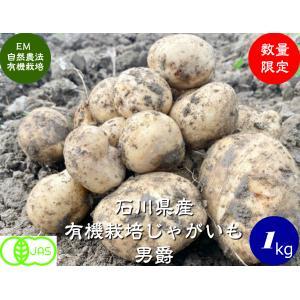 有機ジャガイモ(男爵)1kg hondanojo