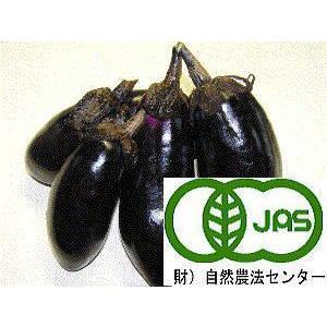 西田さんの有機栽培ナス1袋5個入り|hondanojo