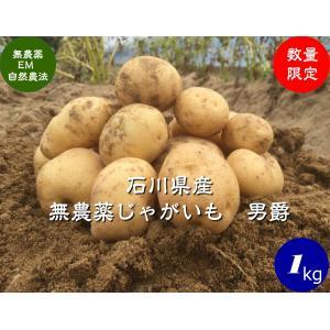 無農薬ジャガイモ、男爵1kg hondanojo