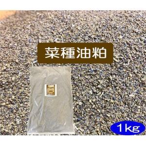 菜種油粕 1kg(JAS有機適合資材)(送料別)|hondanojo