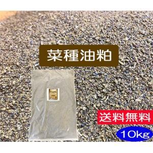 菜種油粕 10kg(JAS有機適合資材)(送料別)|hondanojo