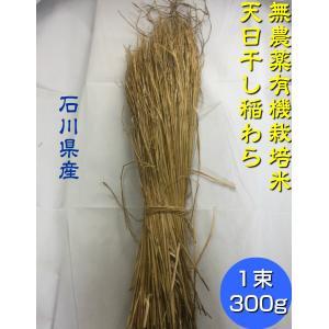 無農薬米 有機栽培米 稲藁 300g「1束」 [稲藁、稲わら、稲ワラ、わら、藁、籾殻、もみ殻、等販売]「無農薬」家庭菜園 野菜作り|hondanojo