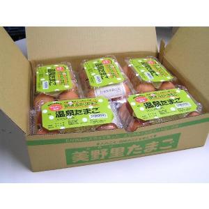 卵 たまご 玉子 (送料無料)温泉たまご みのり温泉たまご5個入り5P箱詰|hondanojo