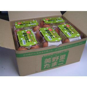 卵 たまご 玉子 (送料無料)温泉たまご みのり 温泉たまご 5個入り10P箱詰|hondanojo