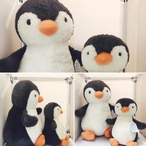 JELLYCAT ピーナツペンギン Lサイズ ぬいぐるみ Peanut Penguin Large  ジェリーキャット ペンギン|hondastore