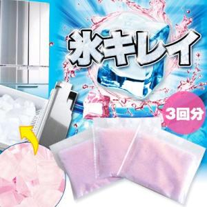 【メール便可6点まで】 自動製氷機洗浄剤 氷キレイ ニーズ|honest