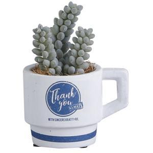 植木鉢 かわいい プレゼント タンドレッス・ポット(Sサイズ)ホワイト/ネイビー|honeymint