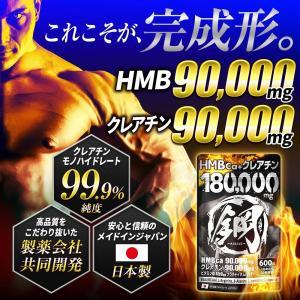 HMB鋼-HAGANE-は、究極の進化を遂げた〜 合計成分160,000mg超の衝撃。 業界最大級!...