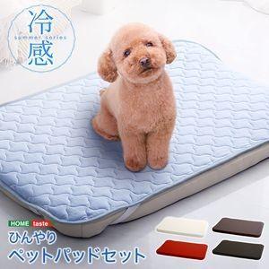 ひんやり 冷感ペットパッドセット 洗えるカバー サマーシリーズ【代引不可】 [03]|honkeya