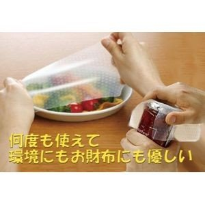 何度も使えるラップ エコナラップ 角型 2P 【代引不可】 [01]|honkeya