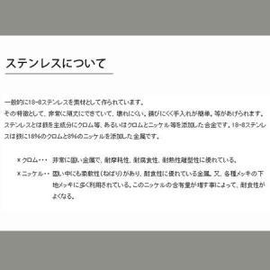 柳宗理 アイスクリームスプーン 6本セット #1250【代引不可】 [01]|honkeya|06