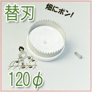 ぽんぽんカッター 120mm 替刃 ビニールシート 苗植え 穴あけ マルチ栽培|honmamon