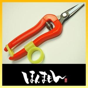 サボテン 両手が使える 収穫鋏 No.1312 短刃 直刃|honmamon