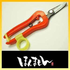 サボテン 両手が使える 収穫鋏 No.1314 短刃 曲刃|honmamon