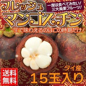 送料無料 世界三大美果のひとつ マンゴスチン 15玉入り 冷凍ではない生のフレッシュマンゴスチンです。