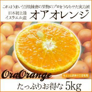 送料無料 みかん感覚で食べられるオアオレンジ 5kg(オラオ...