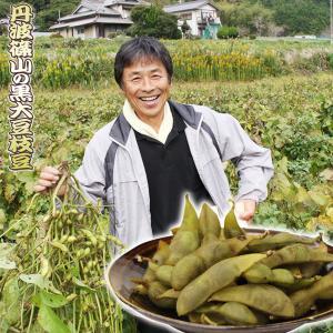 丹波産 黒枝豆 1kg 丹波篠山 で 栽培 された 黒豆の枝豆 丹波黒