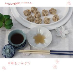 hiracle 桜小皿&豆皿 各5枚セット|hono-y|07