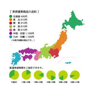 美瑛選果 畑のとなりでしぼったジュース(野菜ジュース)1箱 (20缶入り)|honpo-online|02