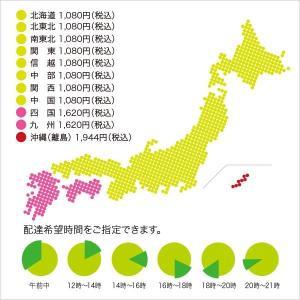 北のどん兵衛 きつねそば 12食 北海道限定/日清 honpo-online 02