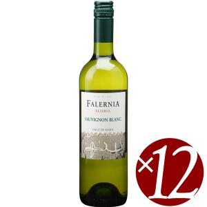 ソーヴィニヨン ブラン レセルバ/ビーニャ ファレルニア 750ml×12本 (白ワイン)|honpo-sakesen