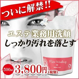 洗顔(ウォッシング)500ml/リエナ for Professional|honpo3boshi