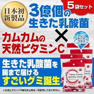カムカムグミキャンディ×5袋/アマゾンカムカム社/乳酸菌配合グミ|honpo3boshi