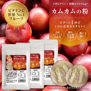 カムカムパウダー 30g×3袋セット 無農薬 粉末 【カムカムの粉】 【送料無料】|honpo3boshi